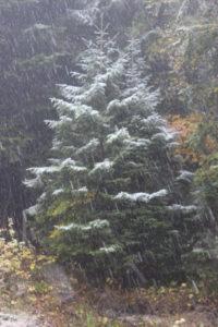8 ottobre e...nevica!