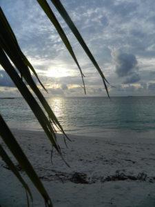 Maldive - 6