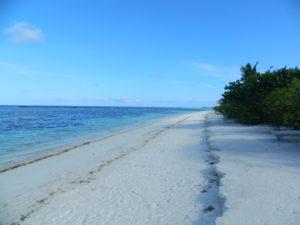 Maldive - 15