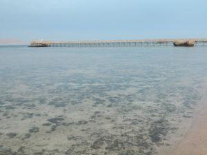 Il Pontile diretto alla barriera corallina