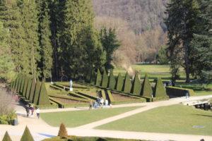 Perfette sculture di vegetazione