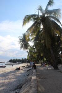 Palme ad Alona Beach