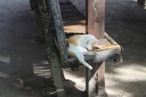 Altro che mare...qui si dorme!