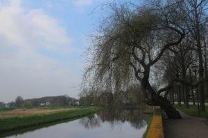 Scorcio sul canale