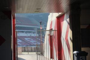 Rubo uno scatto in cui si legge la scritta PSV sulla gradinata