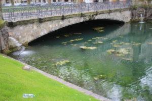 Konigsalle - Dettaglio colore dell'acqua