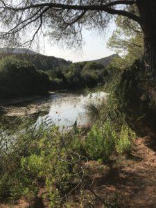 Canale attivo in inverno...laguna stagnante in estate