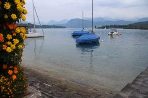 Il Lago dei Quattro Cantoni a Lucerna - 1