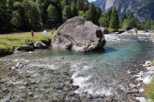 Dettaglio del fiume
