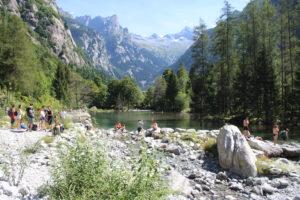 Panoramica tra lago e montagne
