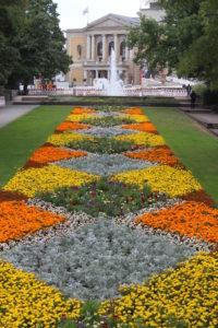 La distesa di fiori ed il colpo d'occhio generale