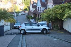 Il parcheggiatore-vandalo