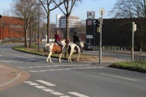 Burgerpark - Due avventori a cavallo