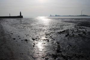 Mare del Nord a Bremerhaven - 2