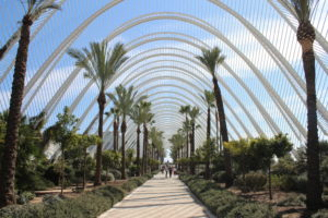 Umbracle - Panoramica interna