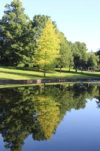 Naul's Mill Park - 2