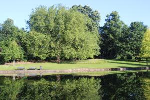 Naul's Mill Park - 1
