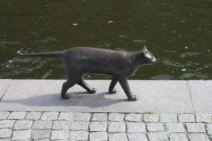 Gatto lungo il canale - 2