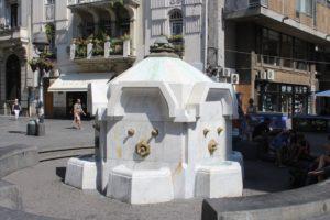 Fontana Delijska