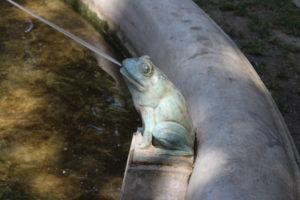 Fontana del Gradski Park - uno dei ranocchi