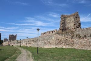 Fortezza di Smederevo - 1