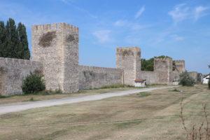 Fortezza di Smederevo - 5