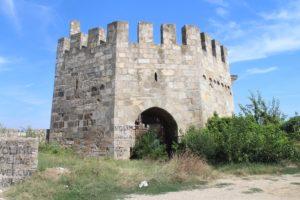 Fortezza di Smederevo - 6