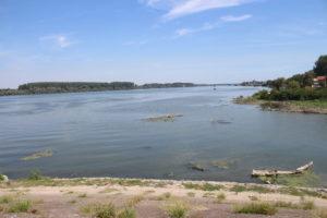 Il Danubio a Smederevo - 1
