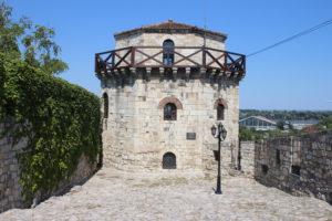 Jaksic's Tower