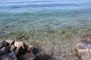 Lago Lemano - purezza dell'acqua
