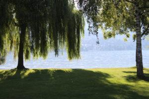 Lago di Thun - scorcio