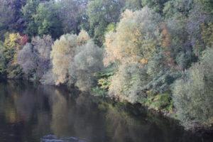 Scorcio dal ponte di metallo di Pivovarska