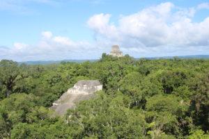 Vista dalla sommità della Gran Piramide