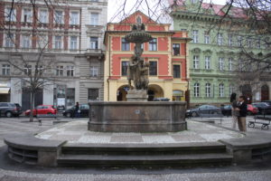 Fontana Wimmerova