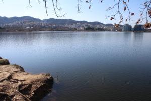 Parku i Madh Kodrat i Liqenit - 3