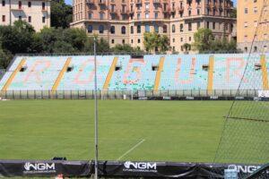 Stadio Artemio Franchi - 3