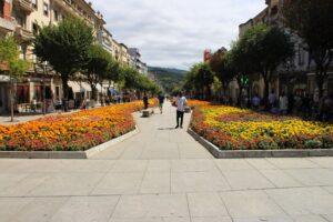 Avenida da Libertade - le aiuole floreali