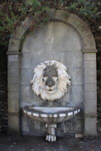 Fontana del Leone (da me ribattezzata così)
