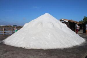 Mucchio di sale ad Aveiro