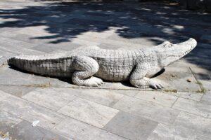 Piazza Castagnola- uno dei Coccodilli