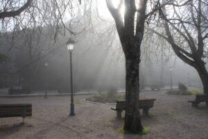 Un banco di nebbia si dirada lentamente ai Giardini Oberdan
